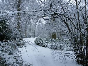 fairhaven_garden_snow_600x